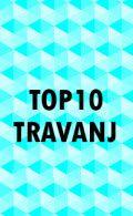 TOP 10 MJESECA