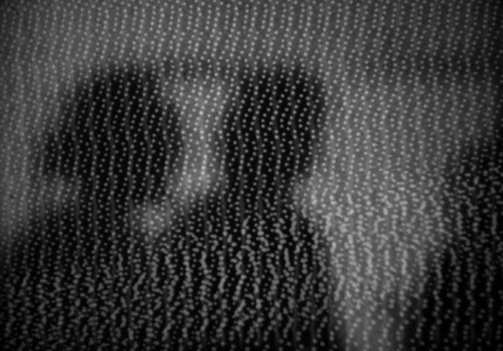 Proširenja audiovizualnih percepcija